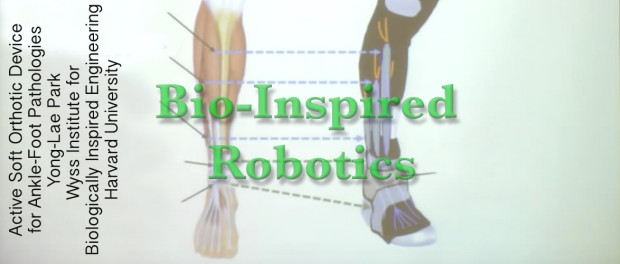 Example of Bio-Inspired Robotics: Active Soft Orthotic Device for Ankle-Foot Pathologies Yong-Lae Park Wyss Institute for Biologically Inspired Engineering Harvard University, 2012