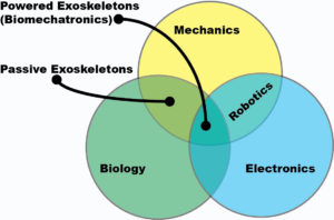 The exoskeleton industry in 2016 stands at the intersection of biomechatronics and biomechanics.