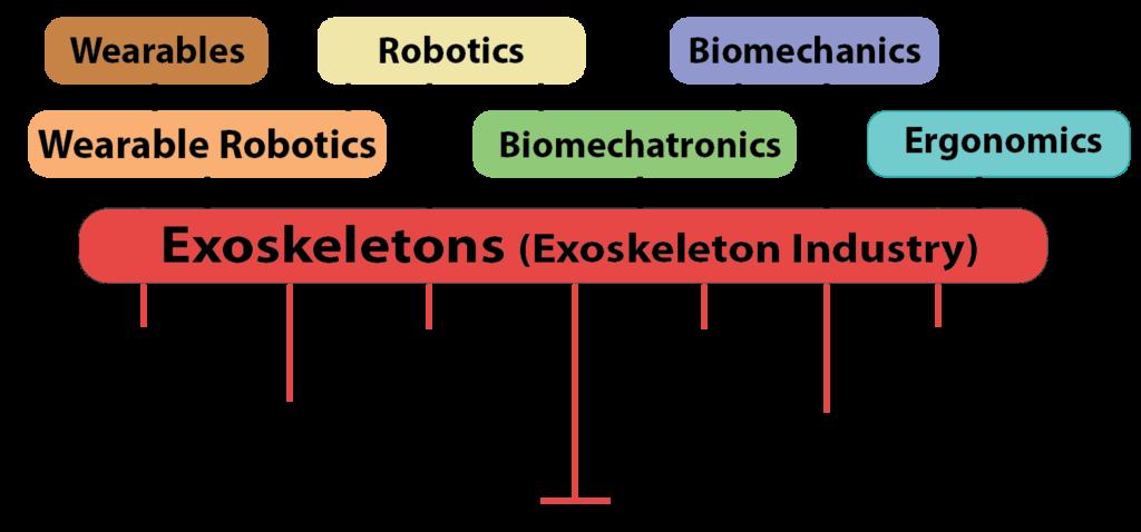 Exoskeleton and Exoskeleton Industry umbrella terms.