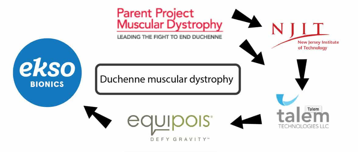 Duchenne Muscular Dystrophy (DMD) - Research | Muscular ...
