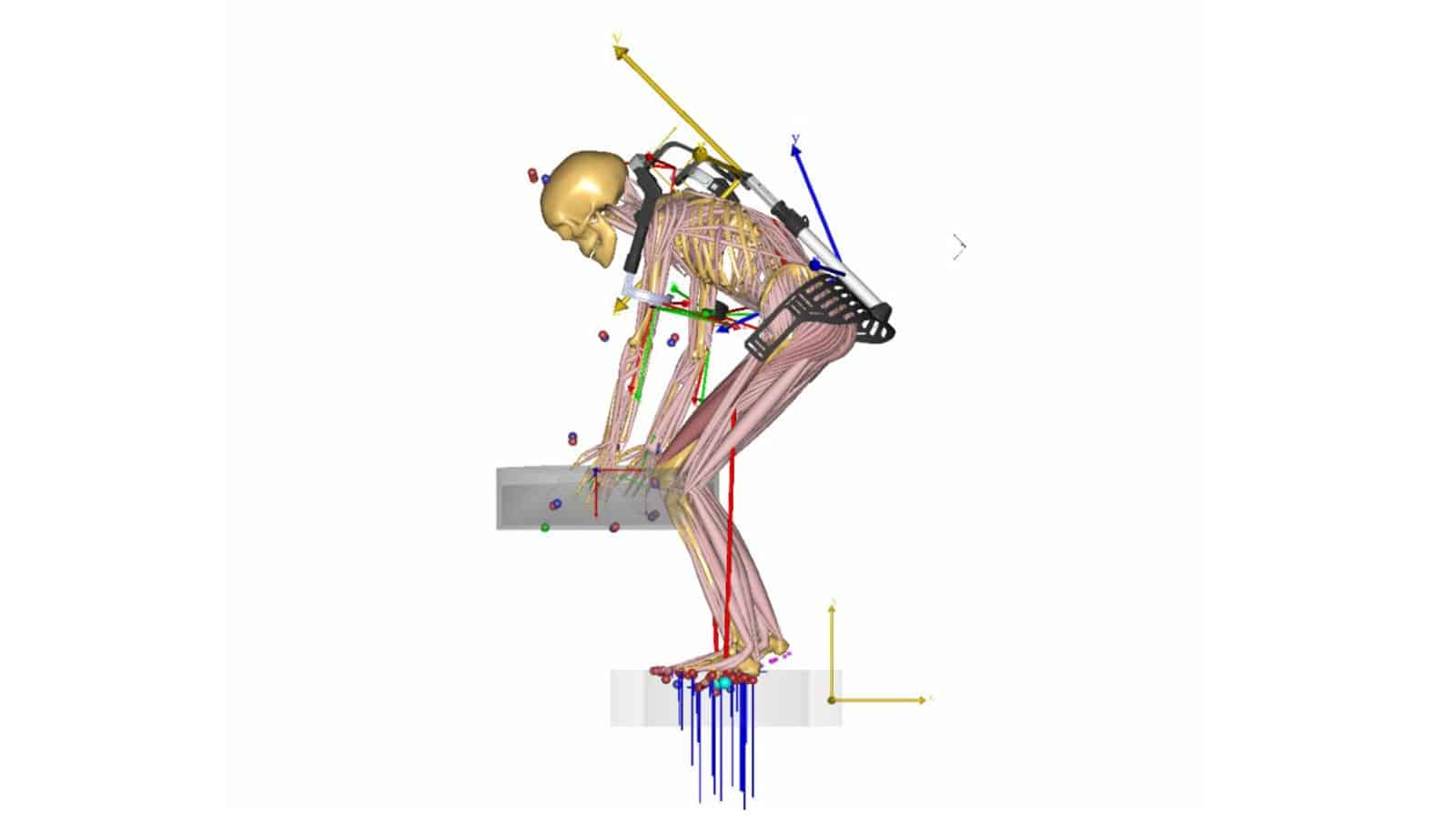 biomechanical investigation of a passive upper extremity exoskeleton for manual material handling